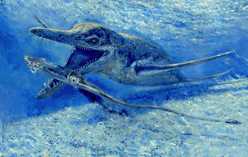 Short Neck Plesiosaur